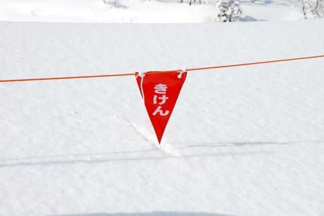 デンジャー スノーサーチ
