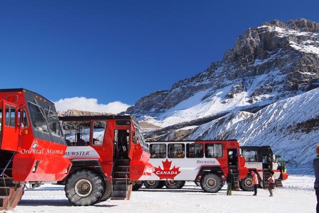 スキーバスツアー スノーサーチ
